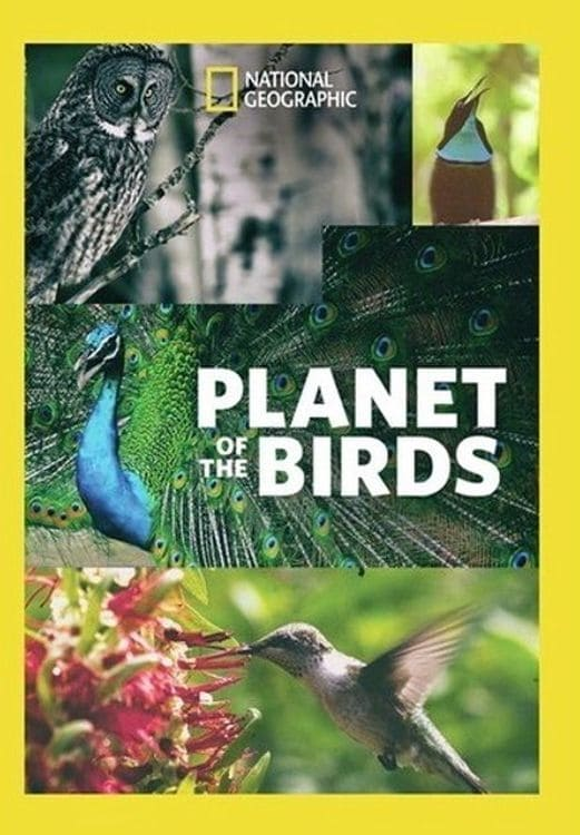 Planet of the Birds (2018)