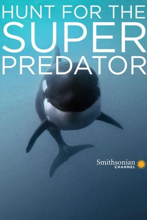 The Search for the Ocean's Super Predator (2014)