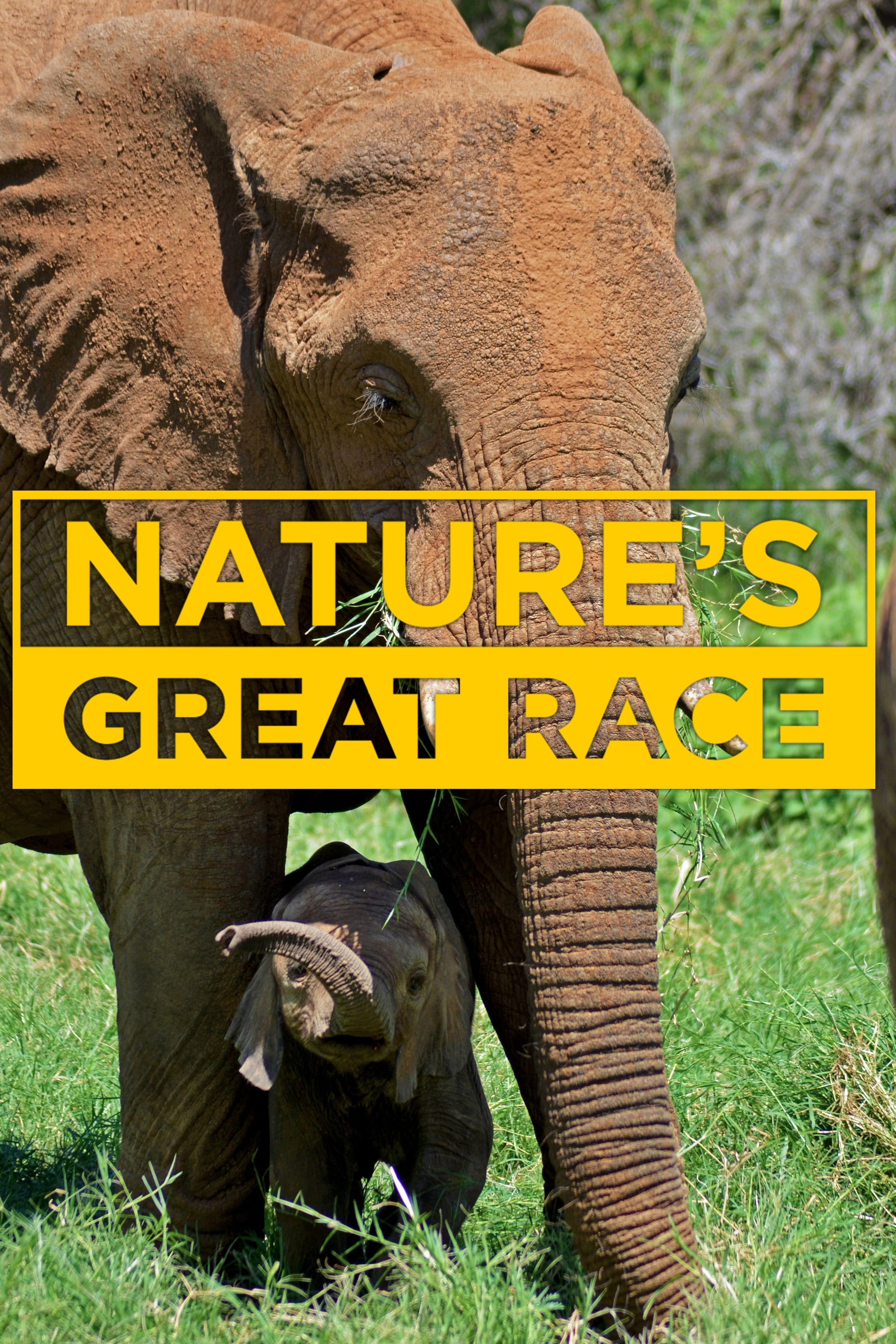 Nature's Great Race series tv complet