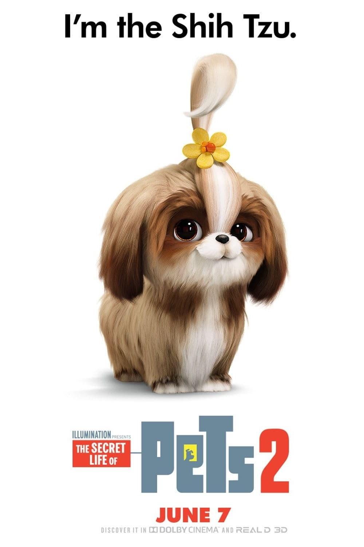 Huisdiergeheimen 2 2019 Gratis Films Kijken Met