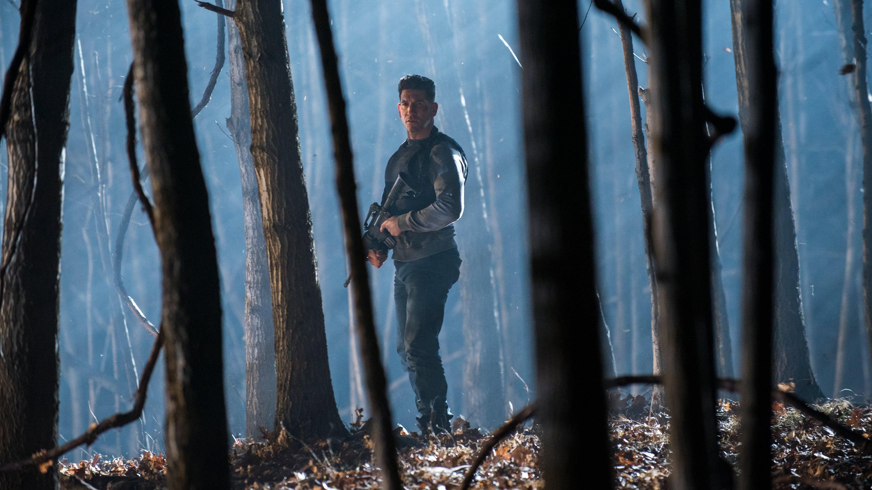Baudėjas 2 Sezonas / The Punisher Season 2 serialas online nemokamai