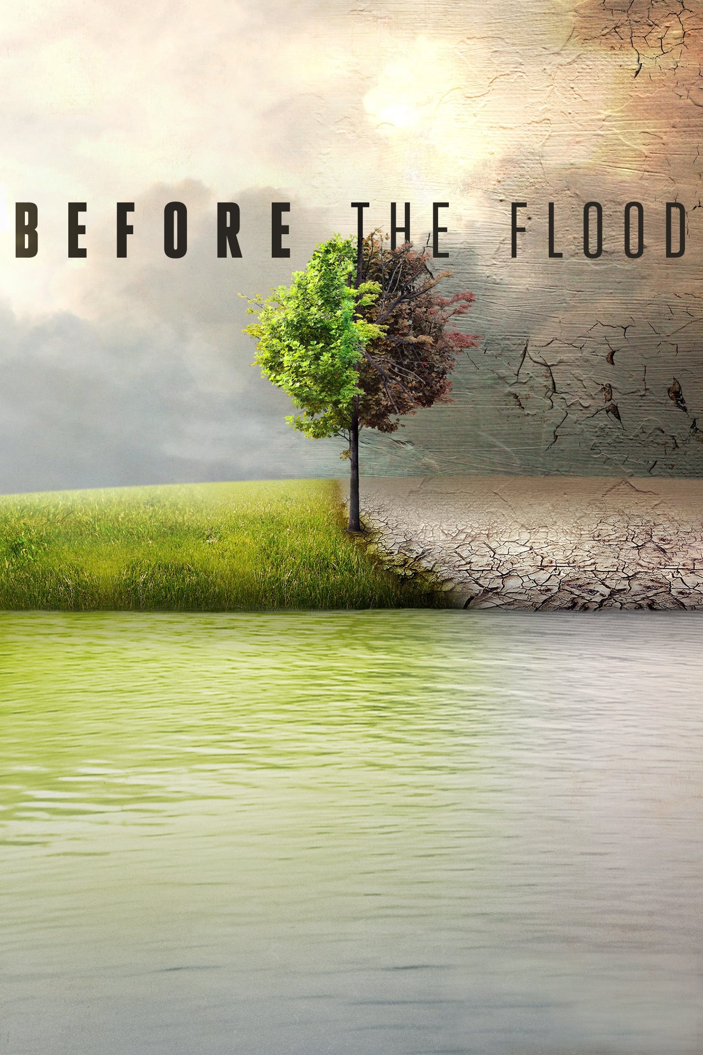 before the flood stream