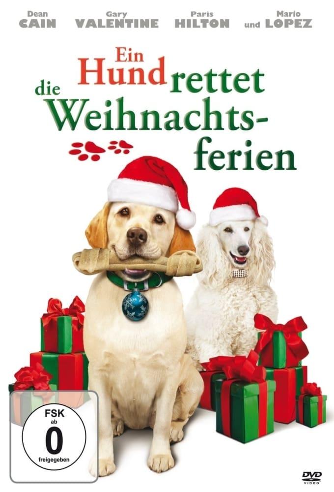 Ein Hund rettet die Weihnachtsferien on FREECABLE TV