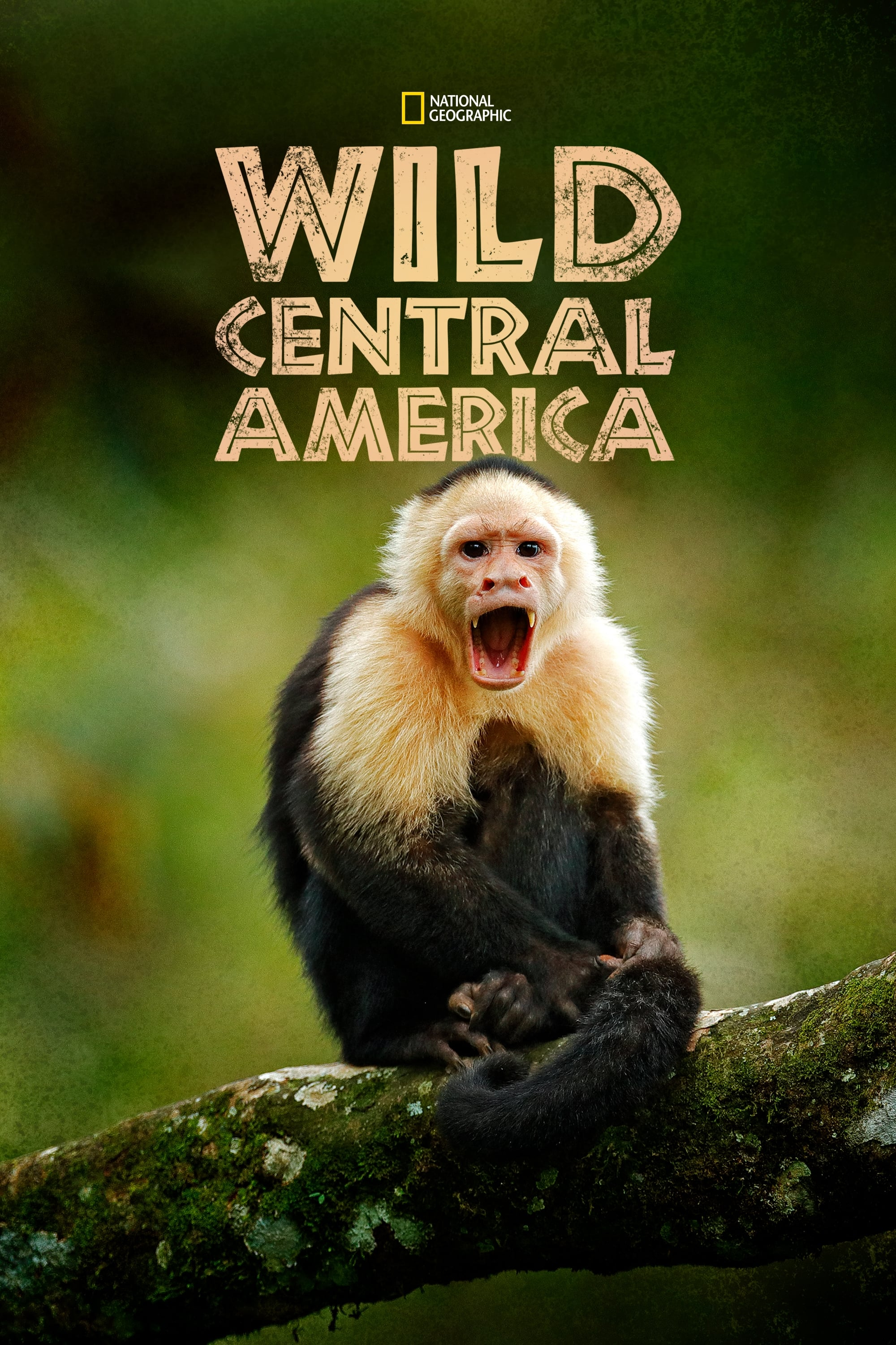 Wild Central America TV Shows About Animal