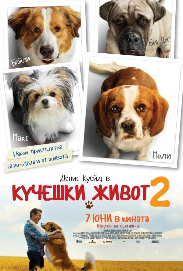 Poster and image movie Film A Dog's Journey - A Dog's Journey -  2019