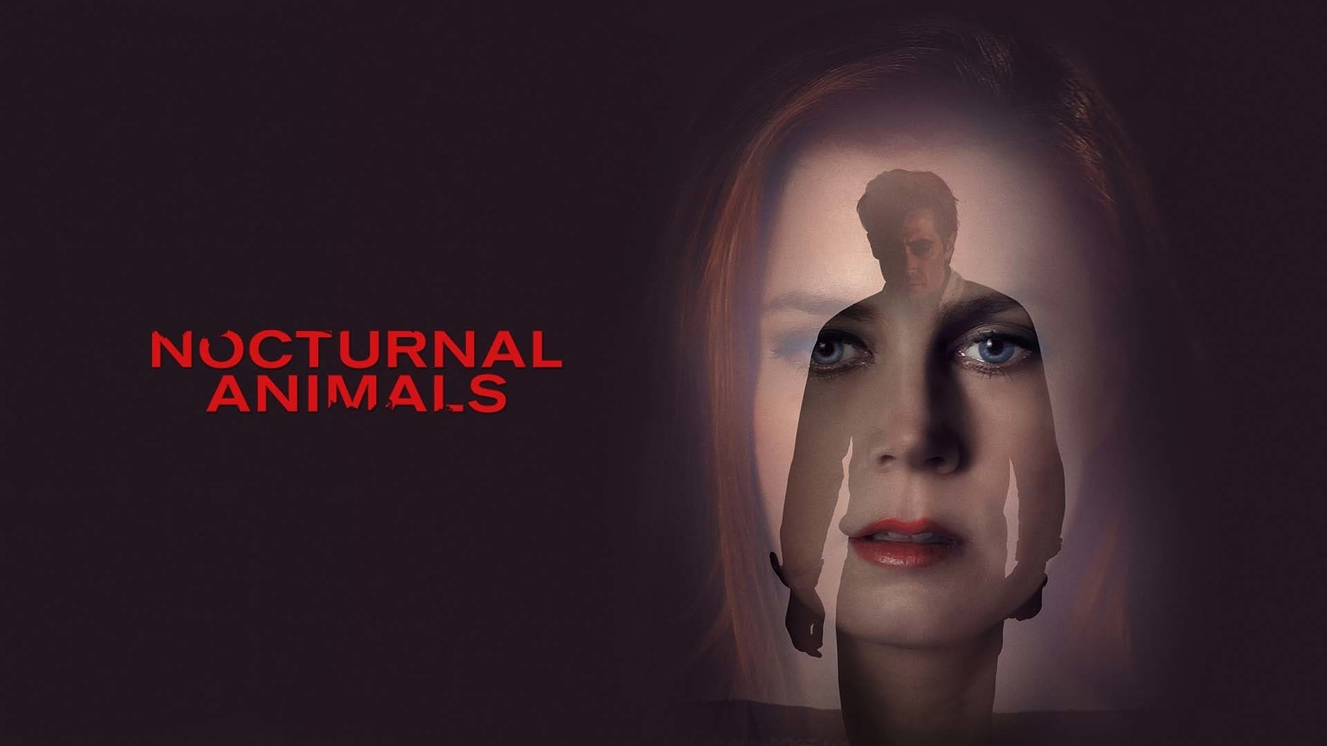 nocturnal animals stream