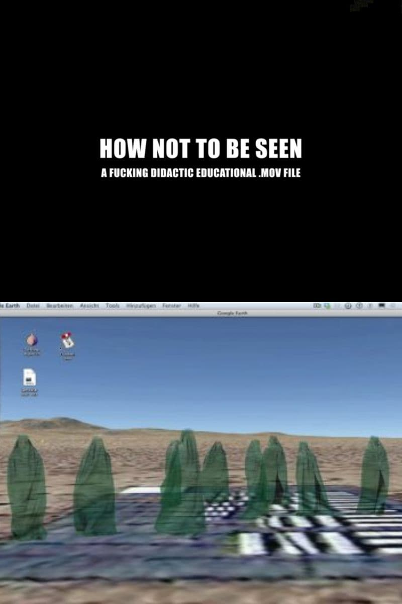 How Not to Be Seen: A Fucking Didactic Educational .MOV File (2013)
