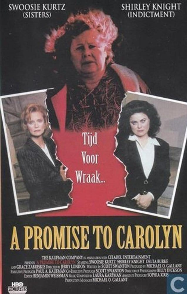 Ver A Promise to Carolyn Online HD Español (1996)