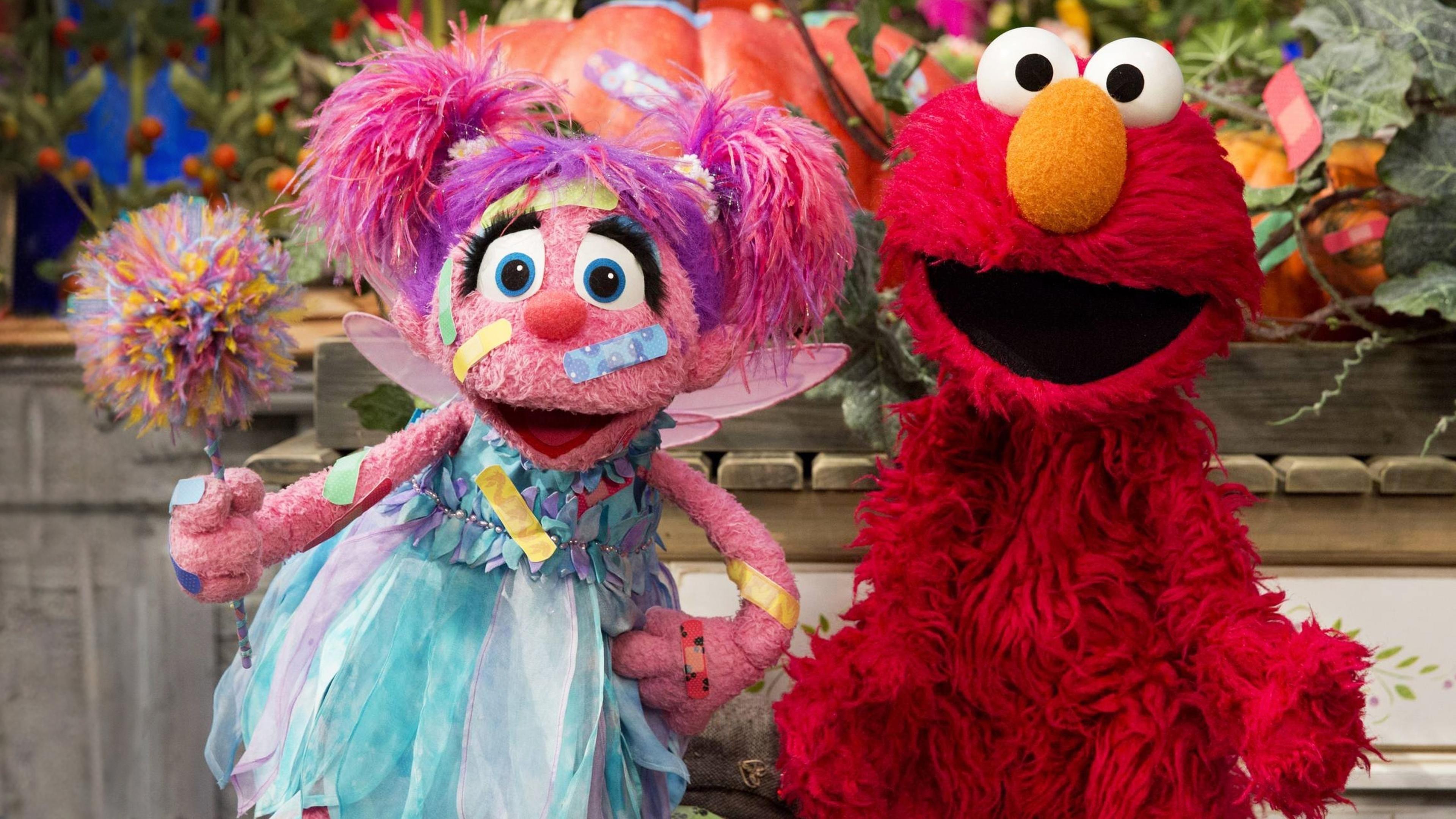 Sesame Street Season 46 :Episode 25  BooBoo Busters