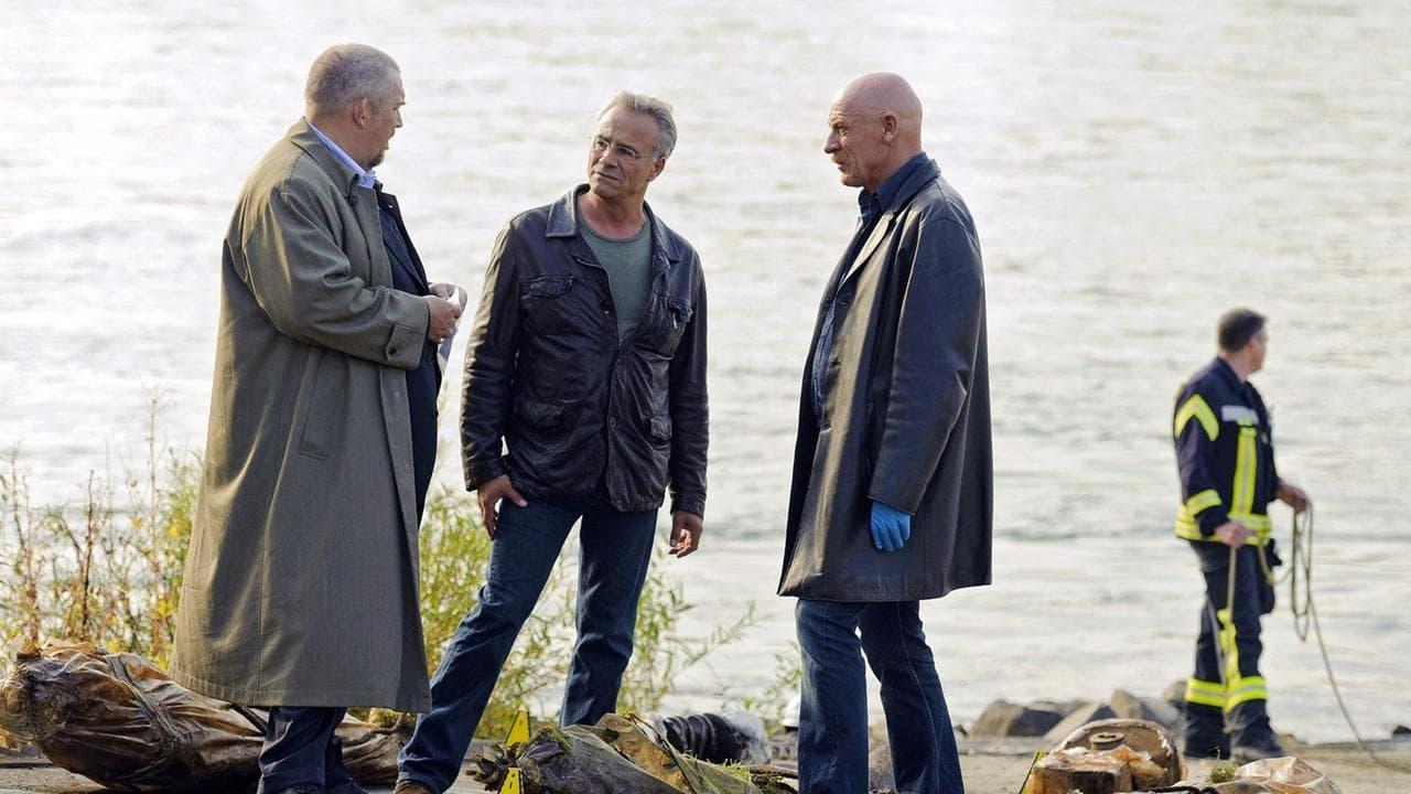 Scene of the Crime Season 43 :Episode 13  Episode 13