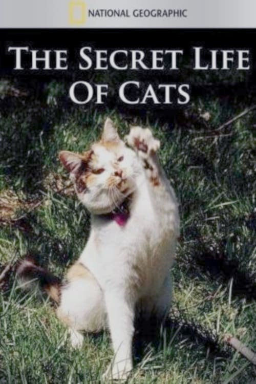 The Secret Life of Cats (2014)