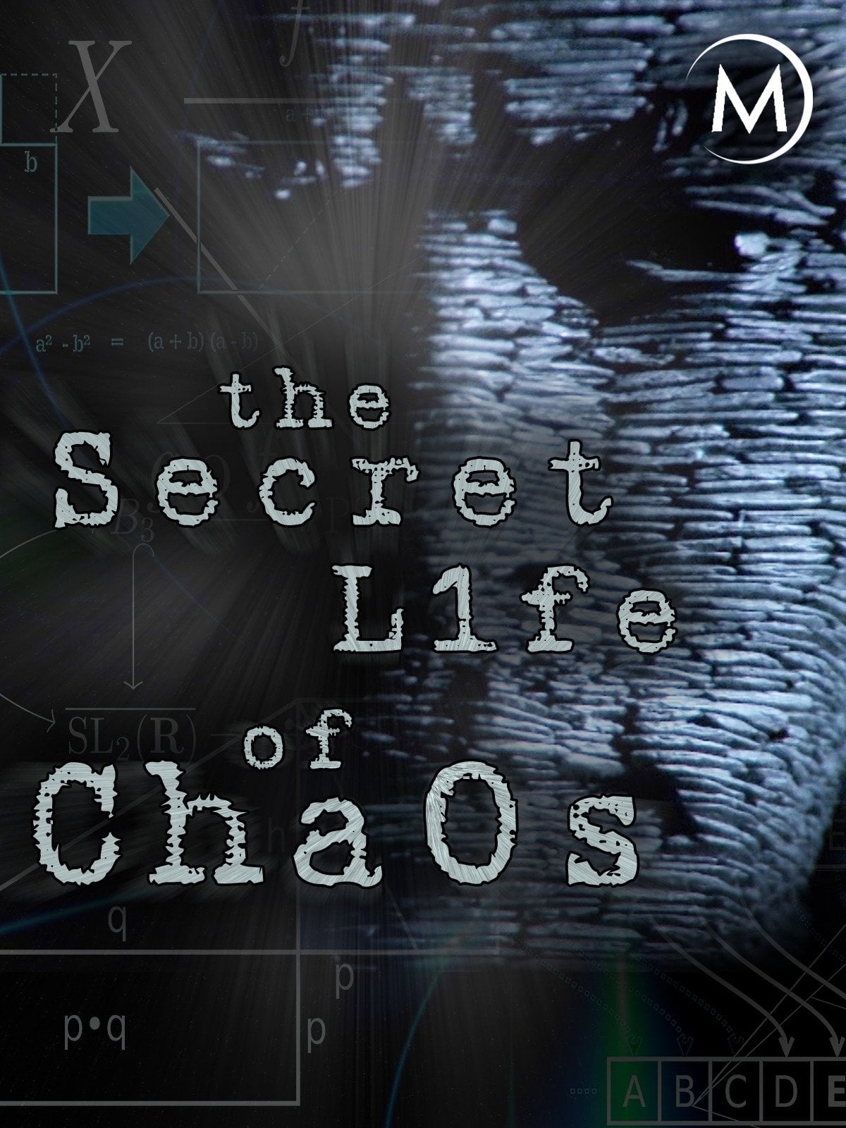 The Secret Life of Chaos (2010)