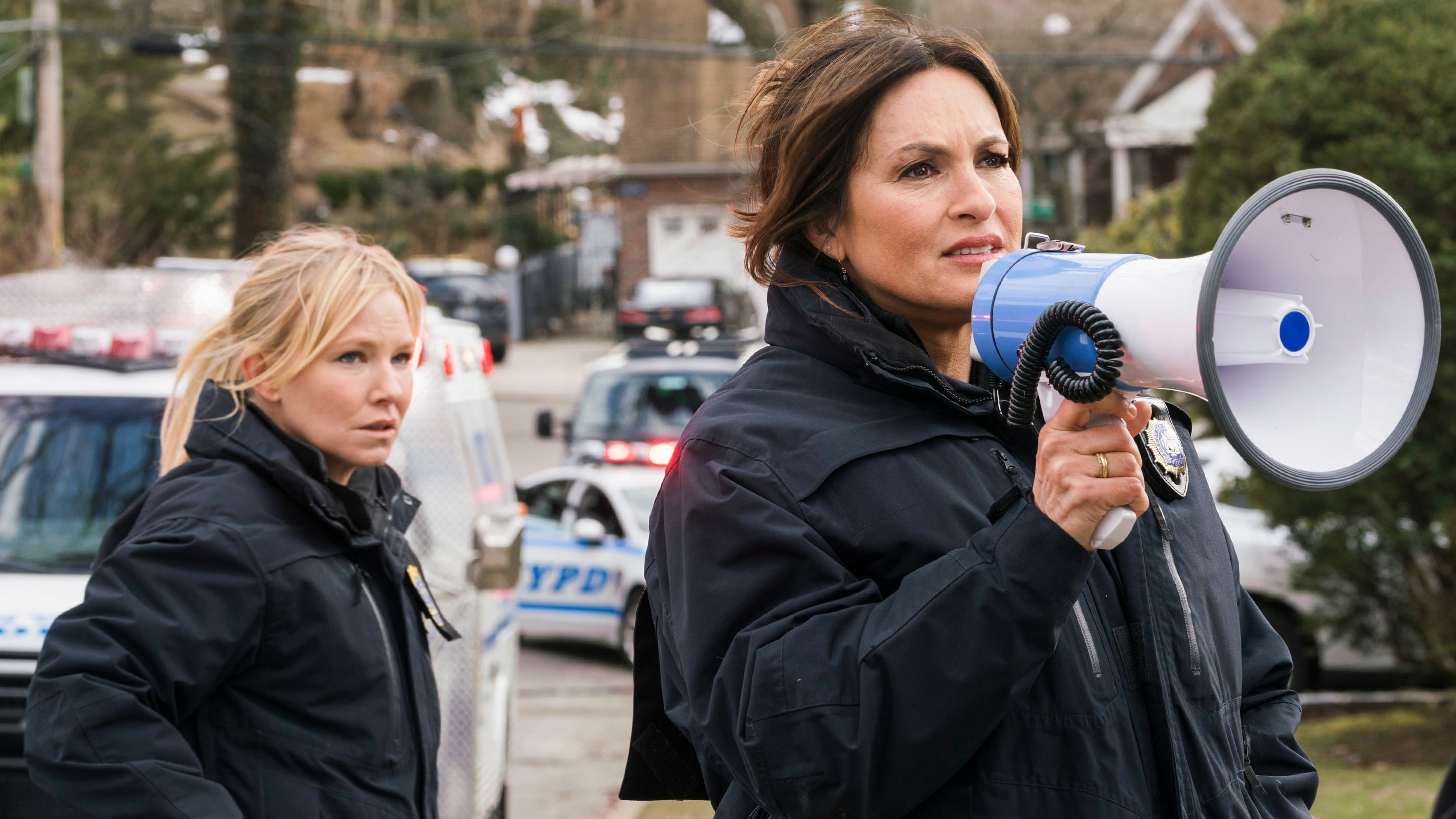 Law & Order: Special Victims Unit Season 19 :Episode 20  The Book of Esther