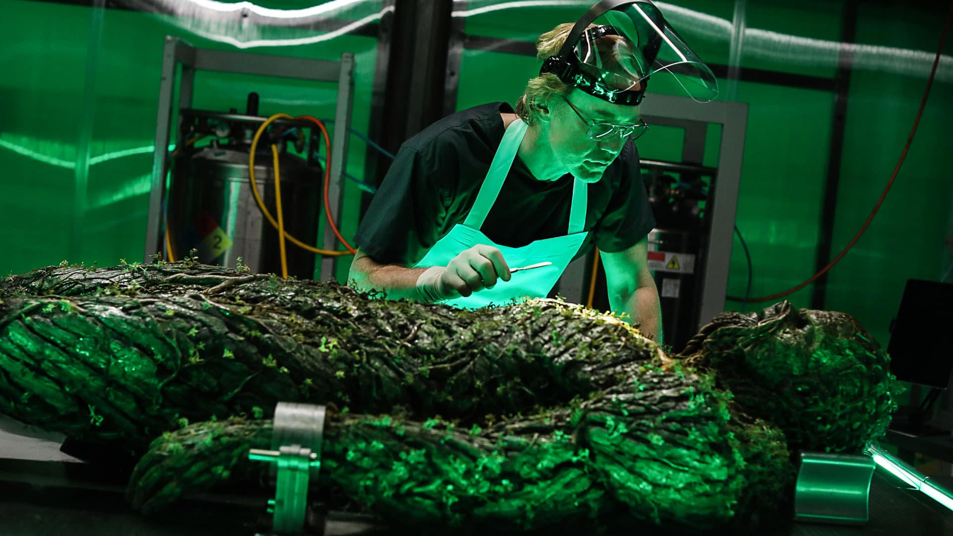 Swamp Thing Season 1 :Episode 9  The Anatomy Lesson