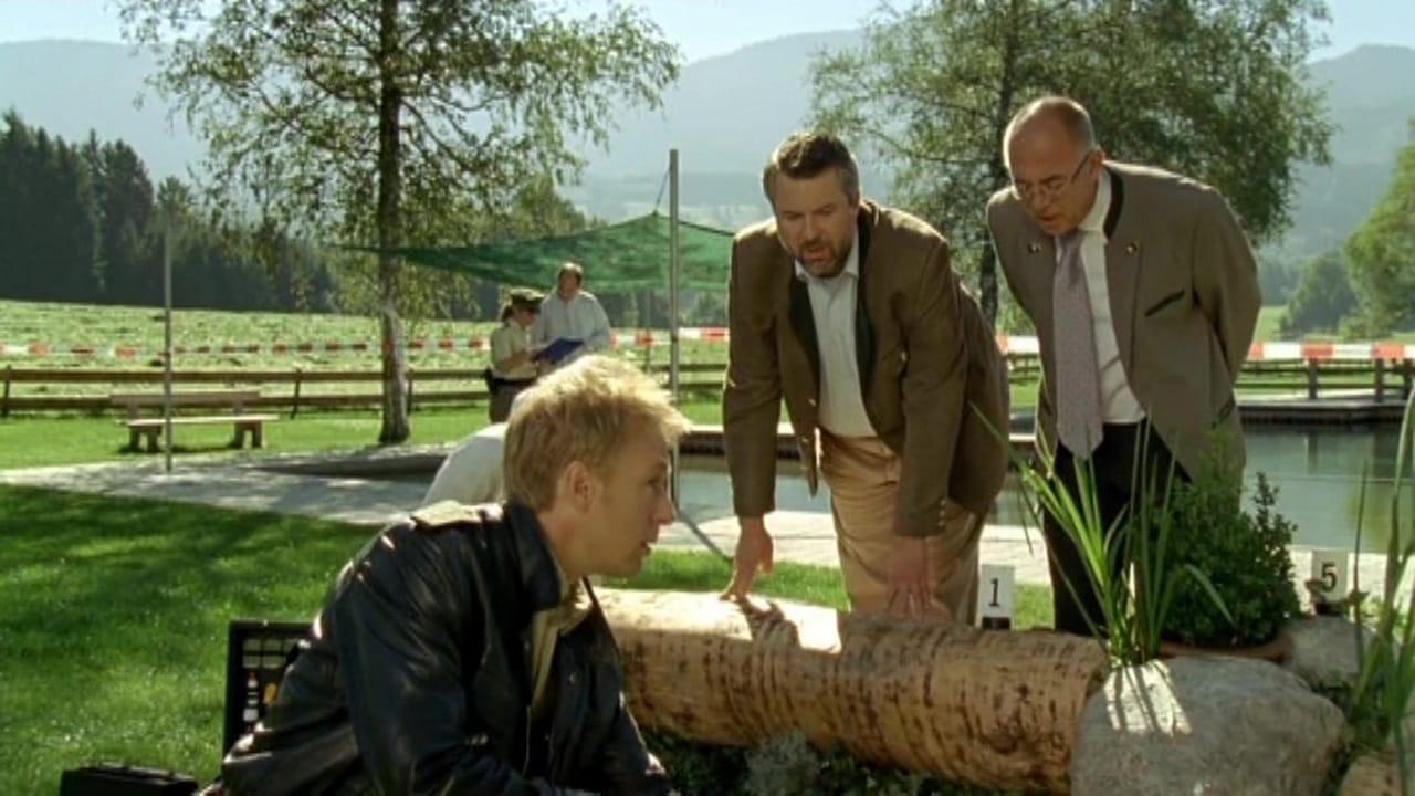 Die Rosenheim-Cops Season 12 :Episode 28  Ein Alibi für alle