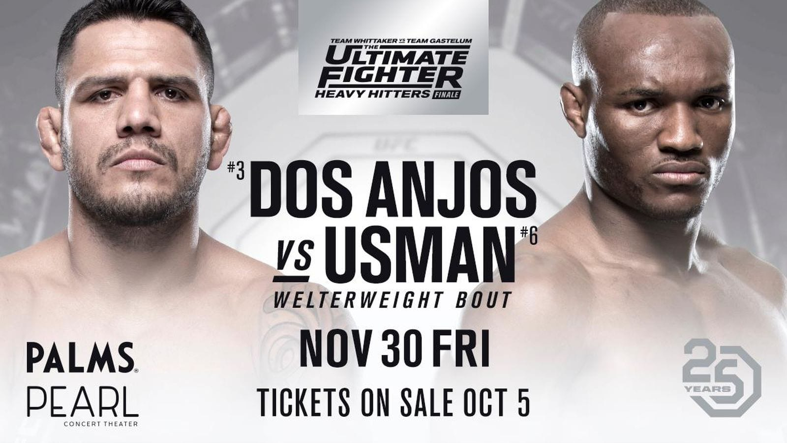 The Ultimate Fighter 28: Heavy Hitters Finale