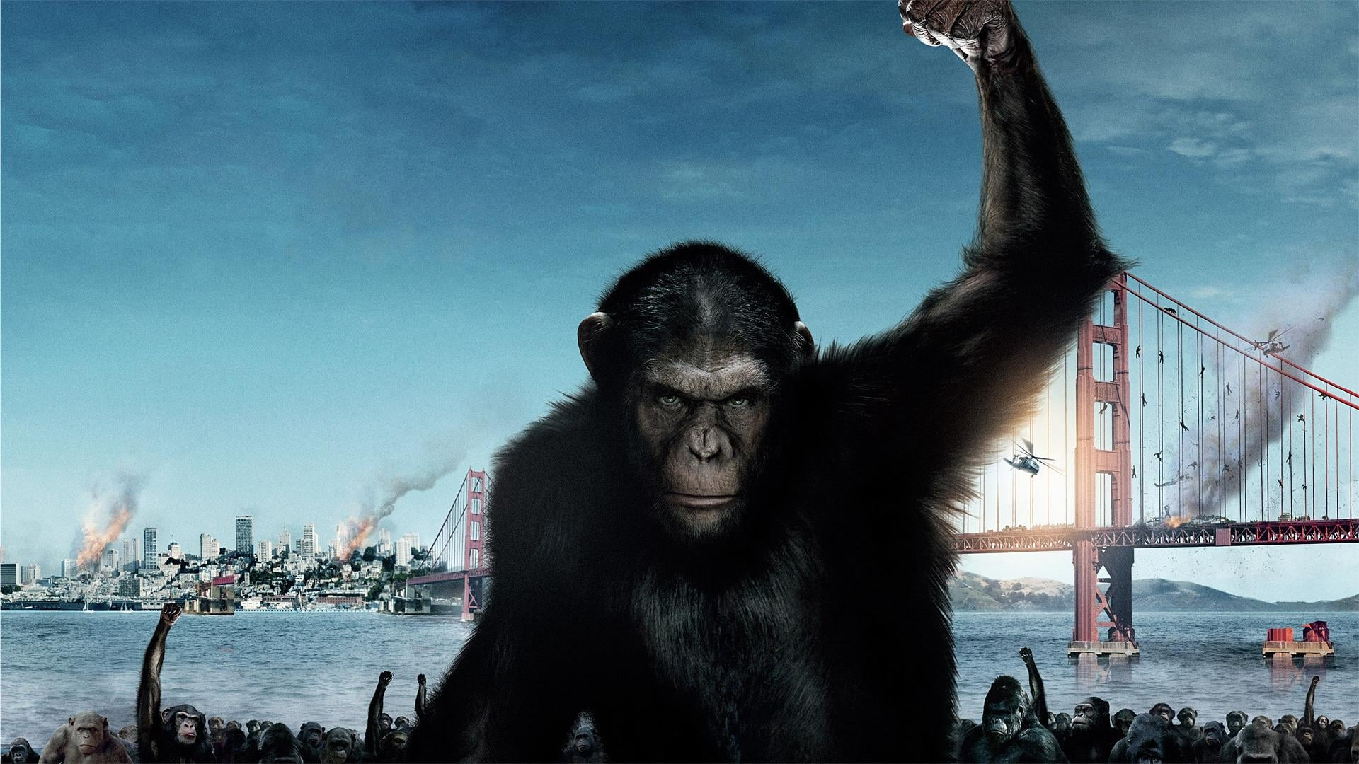 Planet Der Affen Revolution Ganzer Film