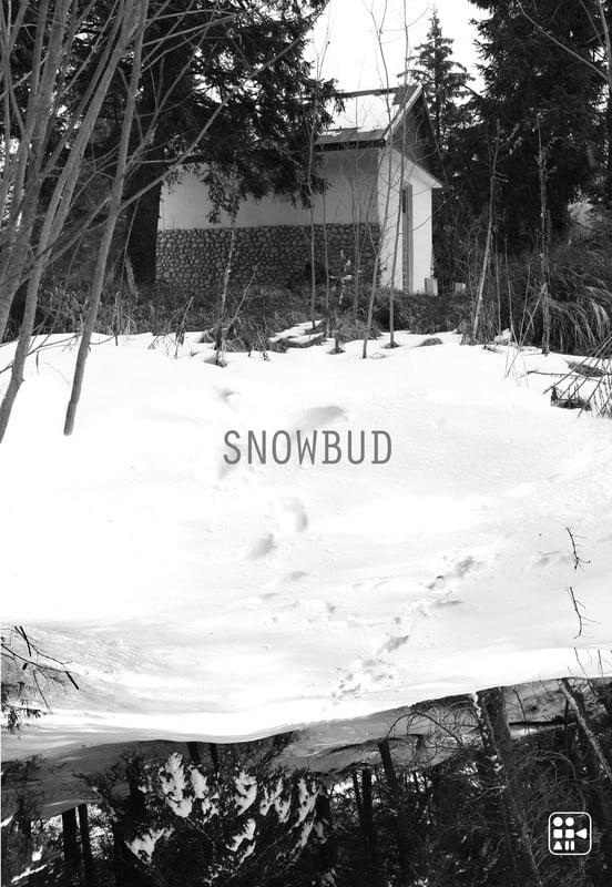 Ver Snowbud Online HD Español ()