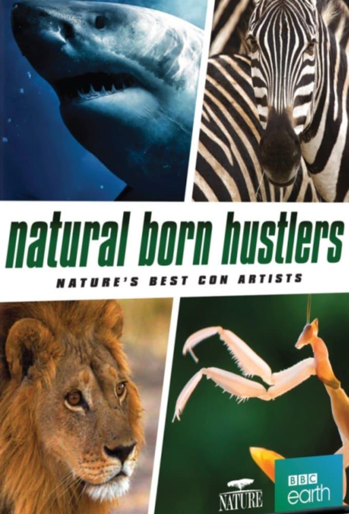 Natural Born Hustlers (2016)