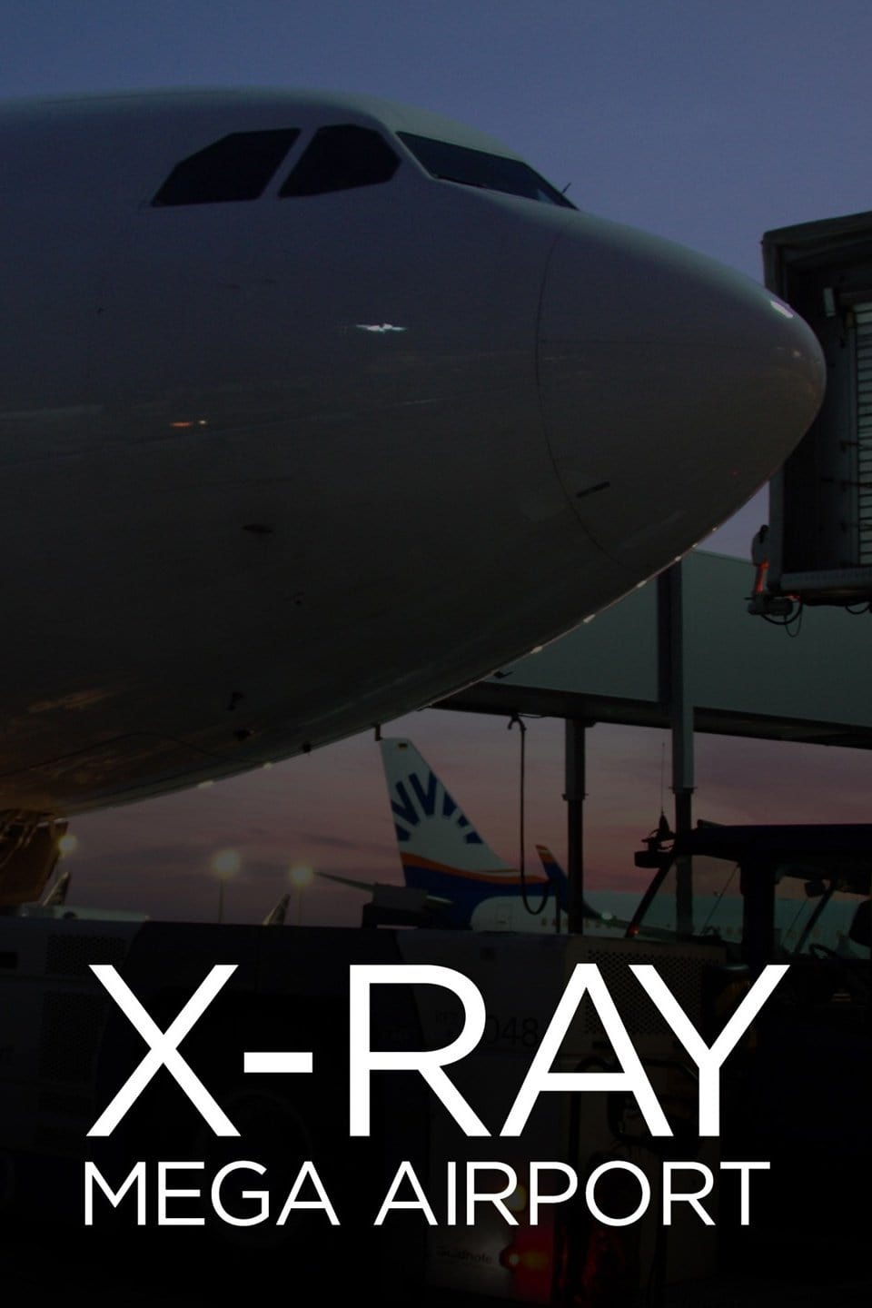 X-Ray Mega Airport (2015)