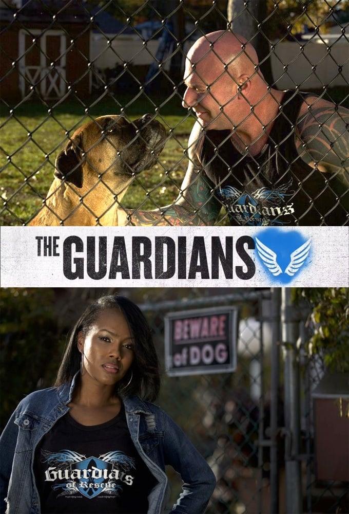 The Guardians (2017)