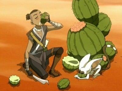 Avatar - Der Herr der Elemente Season 2 :Episode 11  In der Wüste