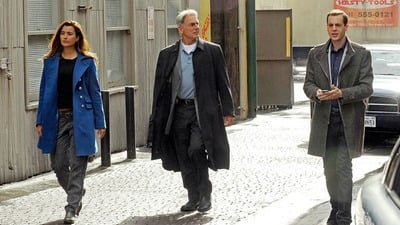 NCIS - Season 8 Episode 15 : Defiance