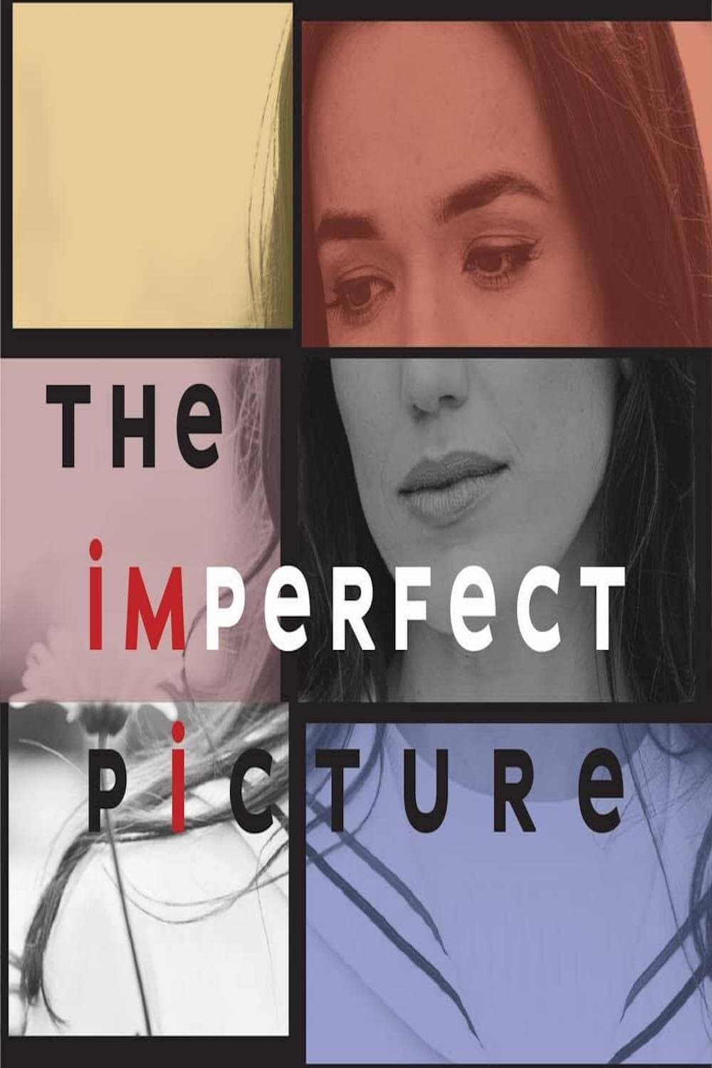 The Imperfect Picture (2021)