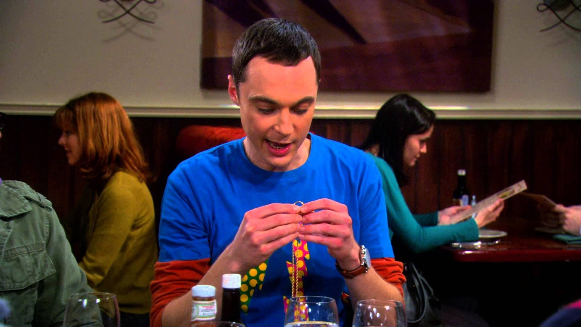The Big Bang Theory Season 3 :Episode 17  The Precious Fragmentation