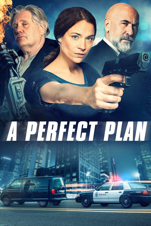 Watch A Perfect Plan Online