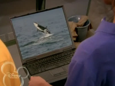 The Suite Life on Deck Season 2 :Episode 25  I Brake For Whales