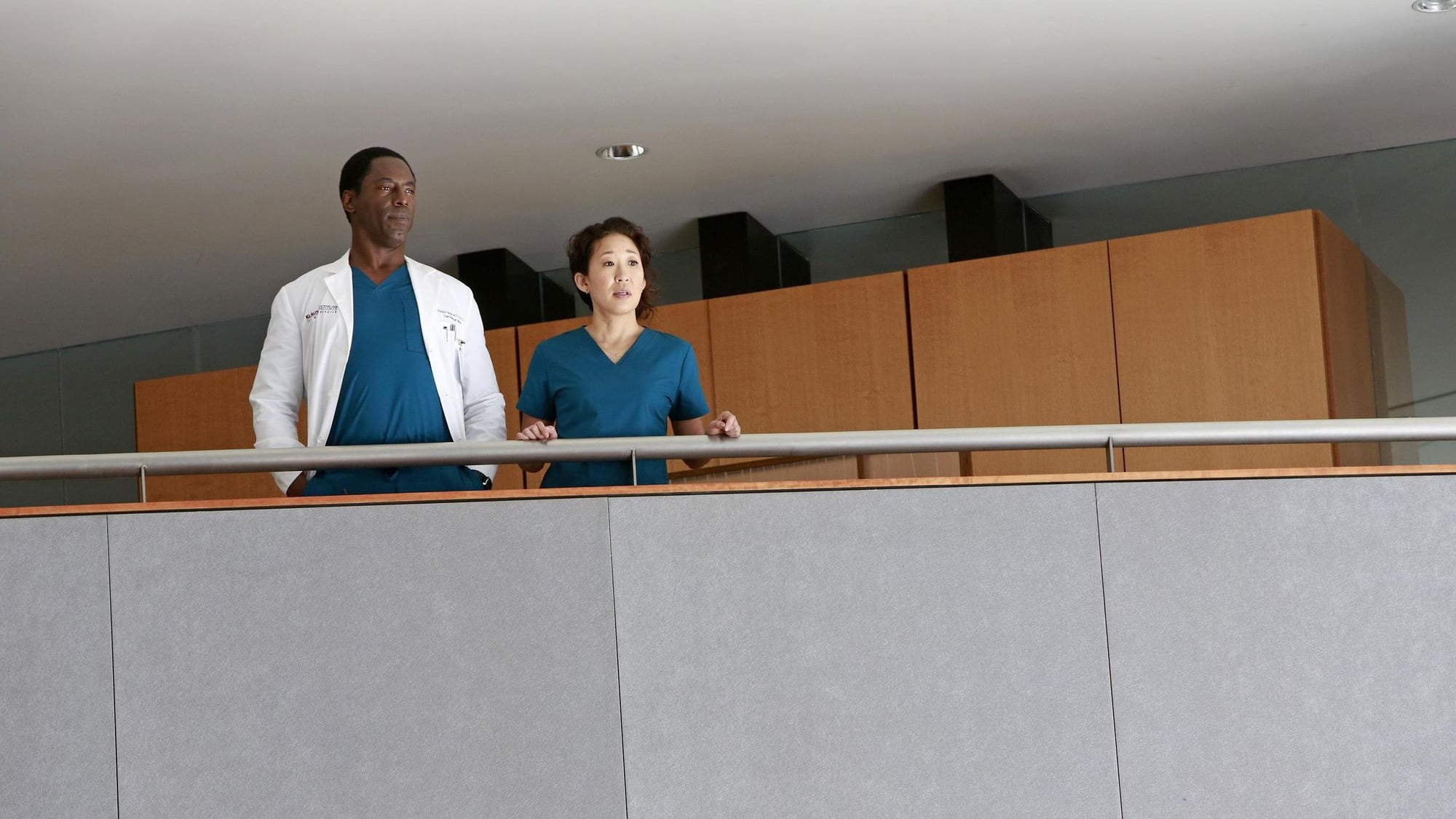 Grey's Anatomy Season 10 :Episode 22  We Are Never Getting Back Together