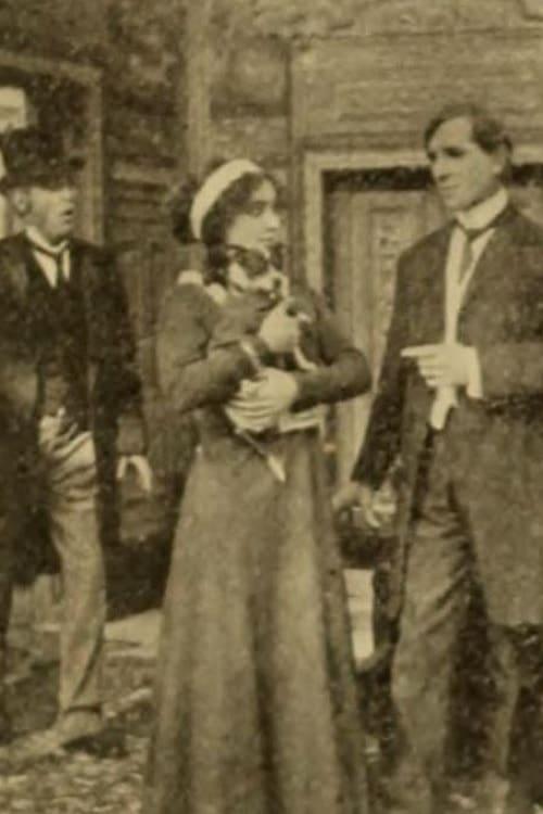 Mixed Pets (1911)