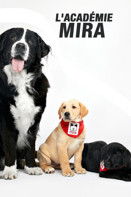 L'académie Mira TV Shows About Rain