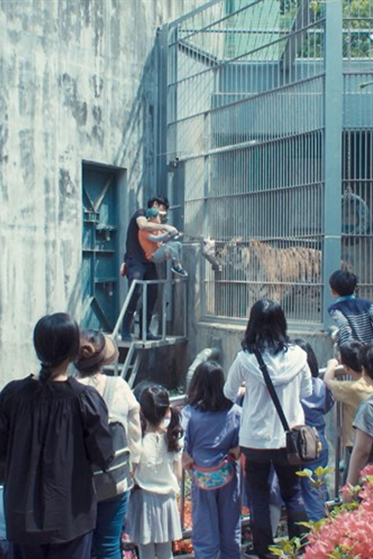 Garden, Zoological (2019)