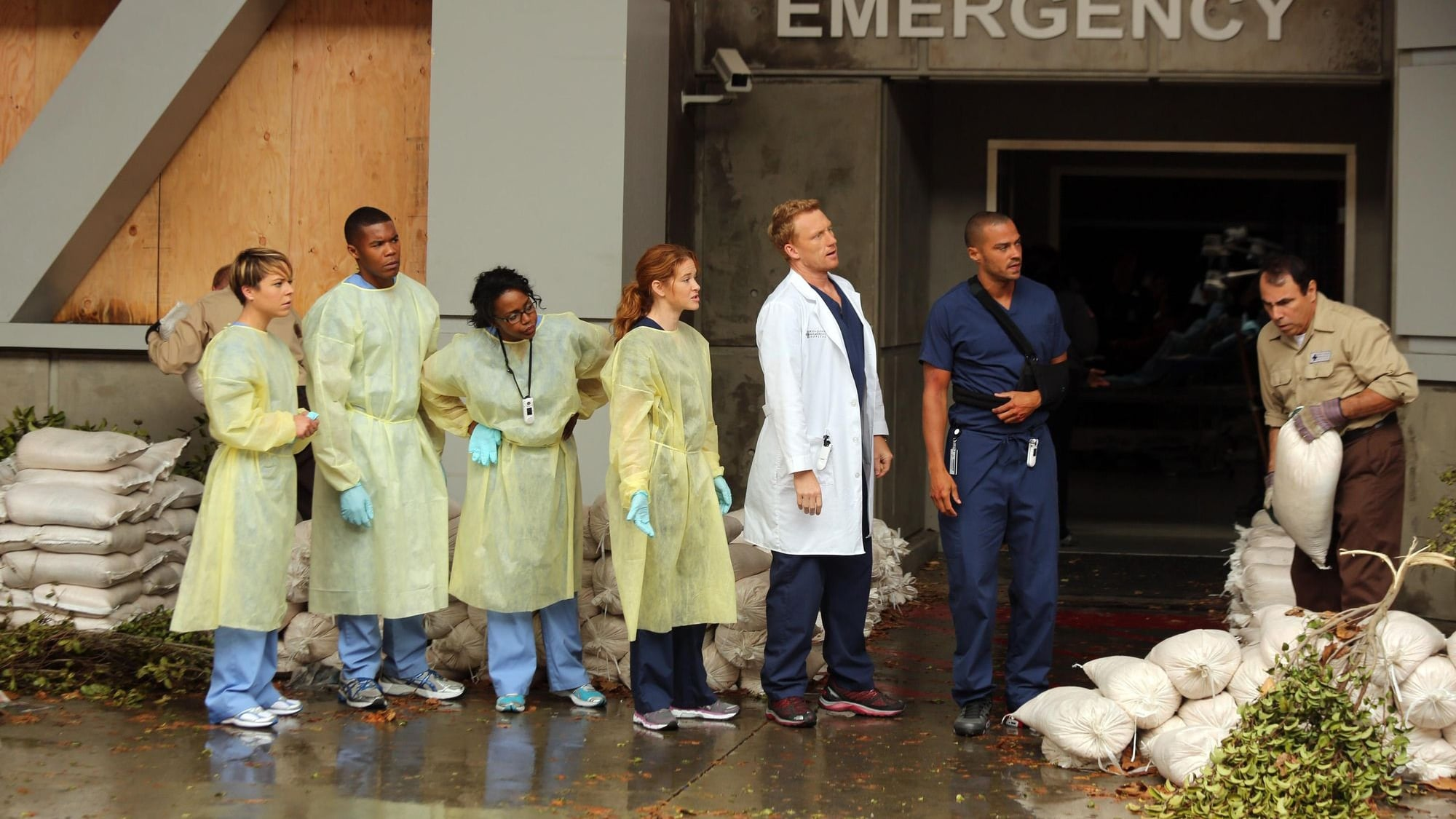 Grey\'s Anatomy: Season 10 Episode 1 S10E01 Openload Watch Free ...