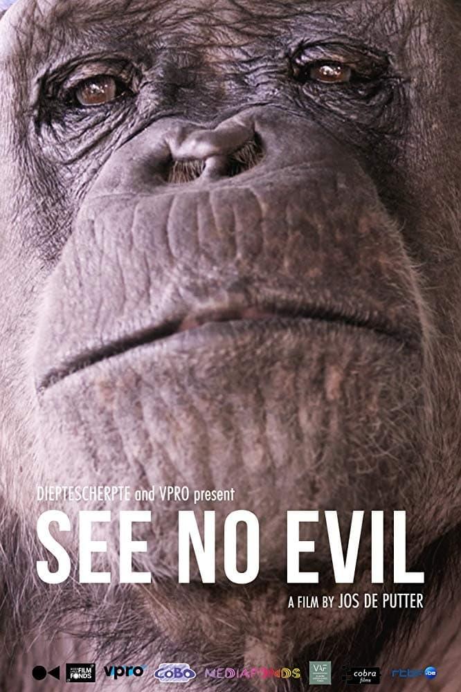 See No Evil (2014)