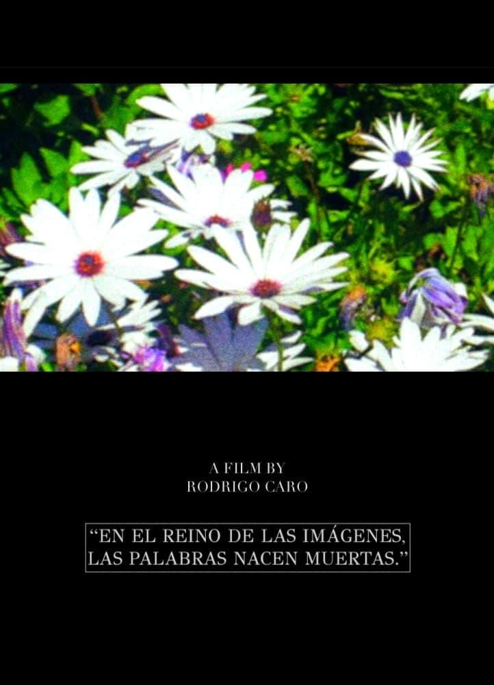 En el reino de las imágenes, las palabras nacen muertas (1970)
