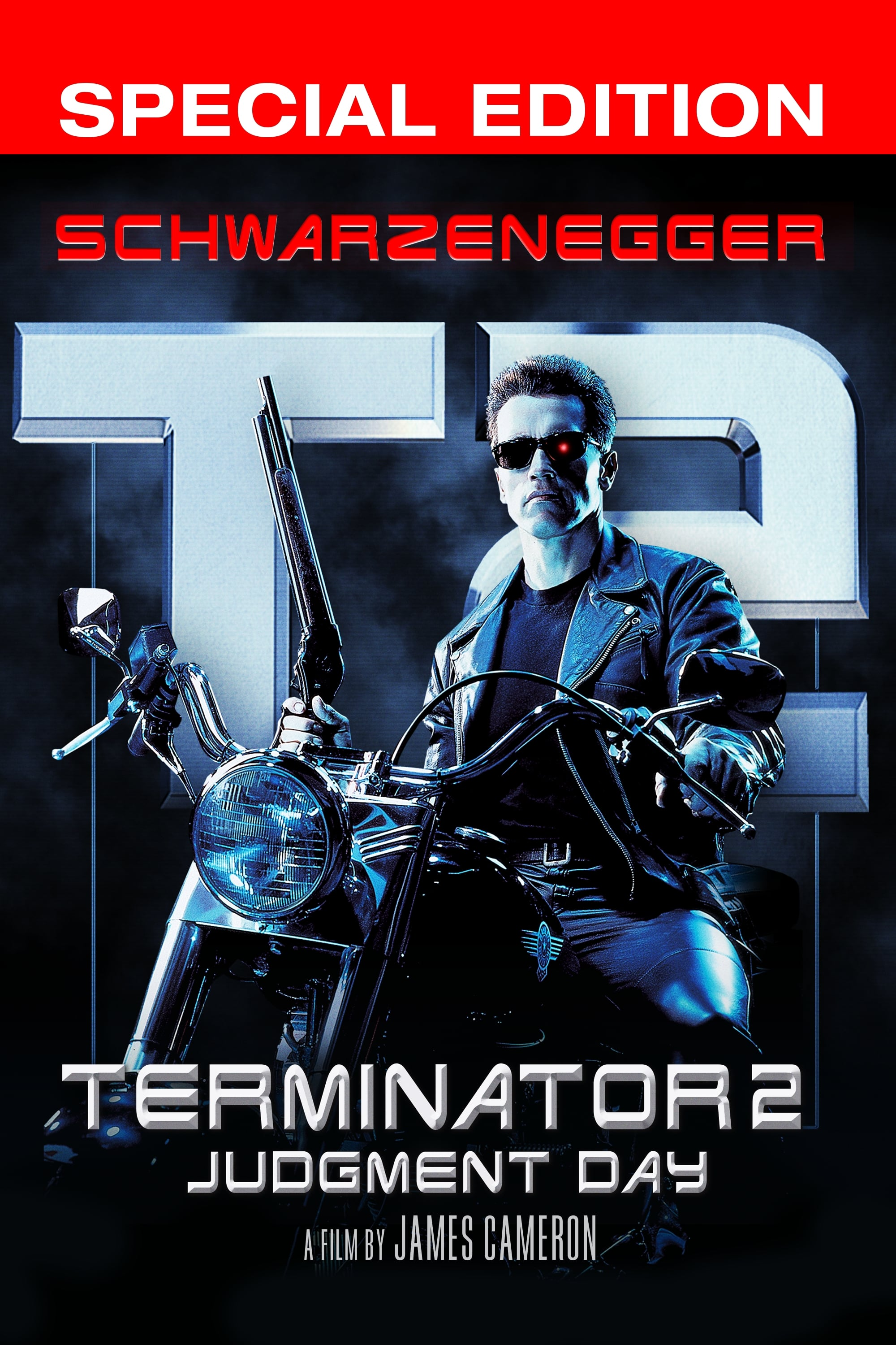 Terminator 2: Judgment Day (1991) - Posters — The Movie ...