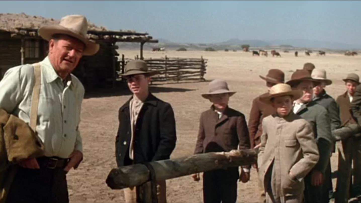 Los cowboys (1972)