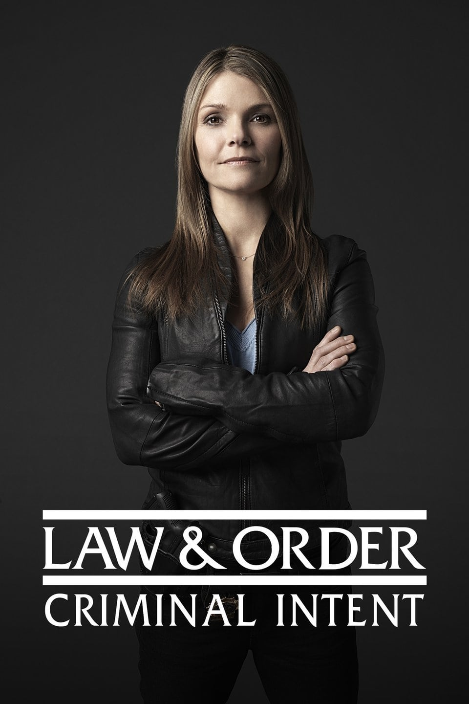Law & Order: Criminal Intent (2001)