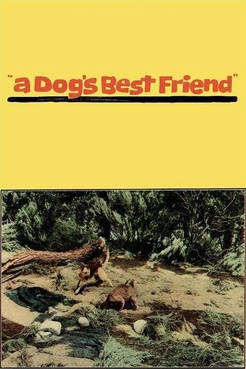 A Dog's Best Friend (1959)