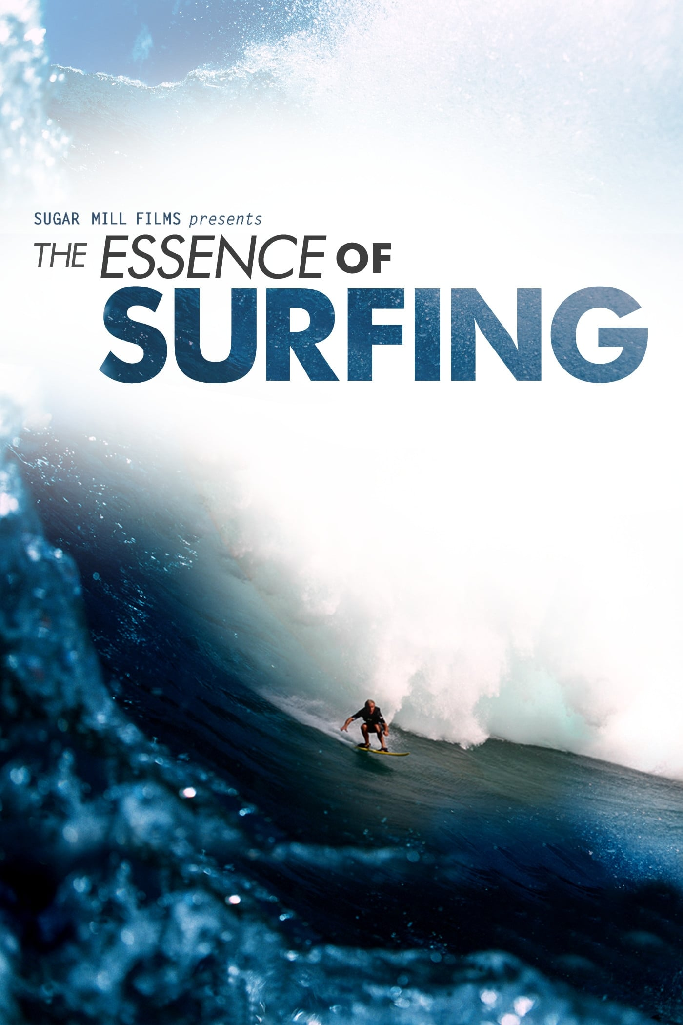 The Essence of Surfing on FREECABLE TV