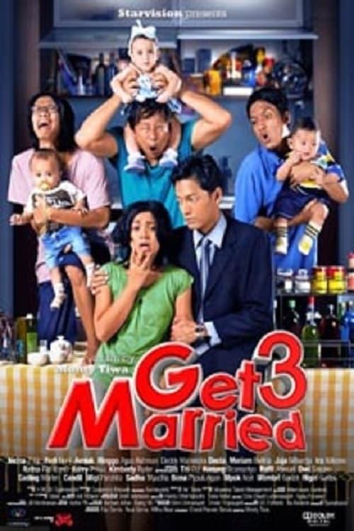 Ver Get Married 3 Online HD Español (2011)