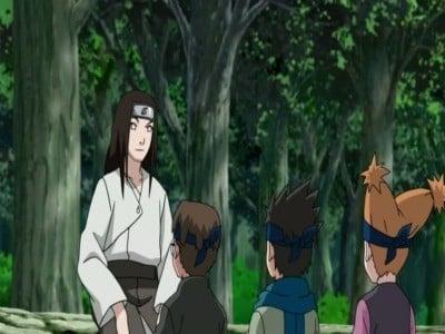 Naruto Shippūden Season 9 :Episode 192  Neji Chronicles