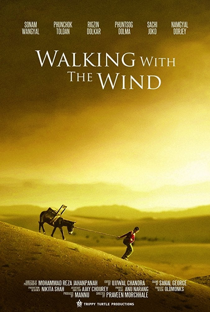 watch Walking With the Wind 2017 online free