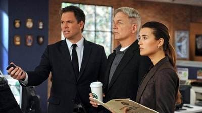 NCIS Season 10 :Episode 13  Hit and Run