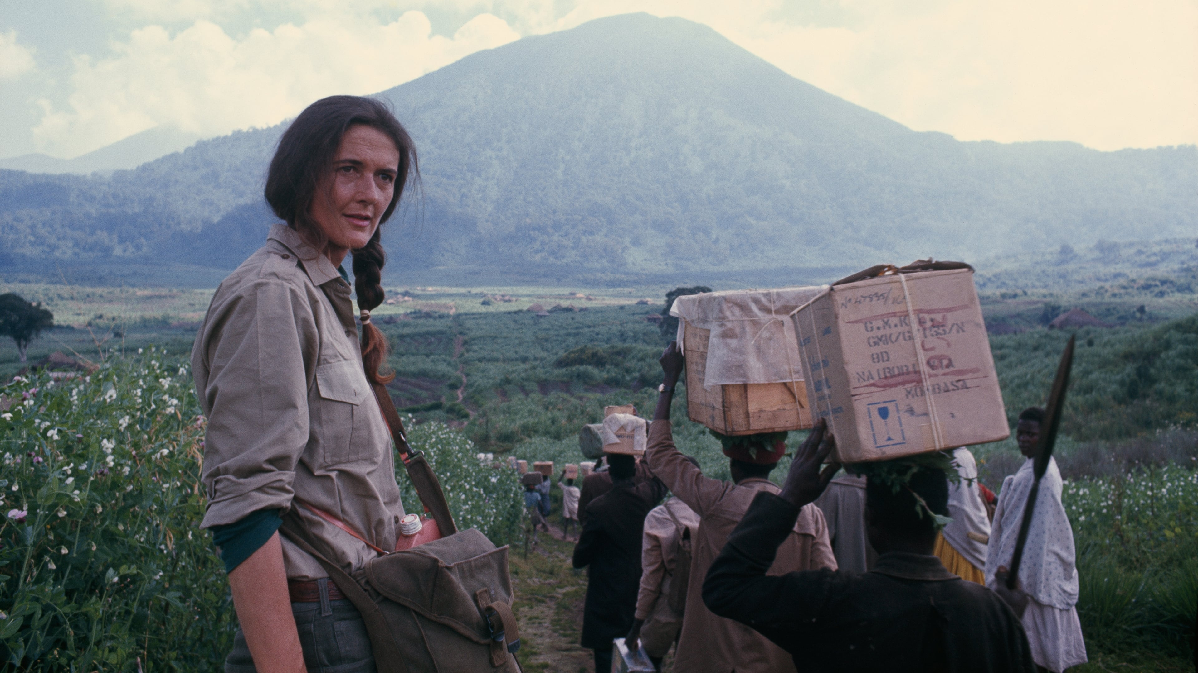 Dian Fossey: Secrets in the Mist wiki, synopsis, reviews ...