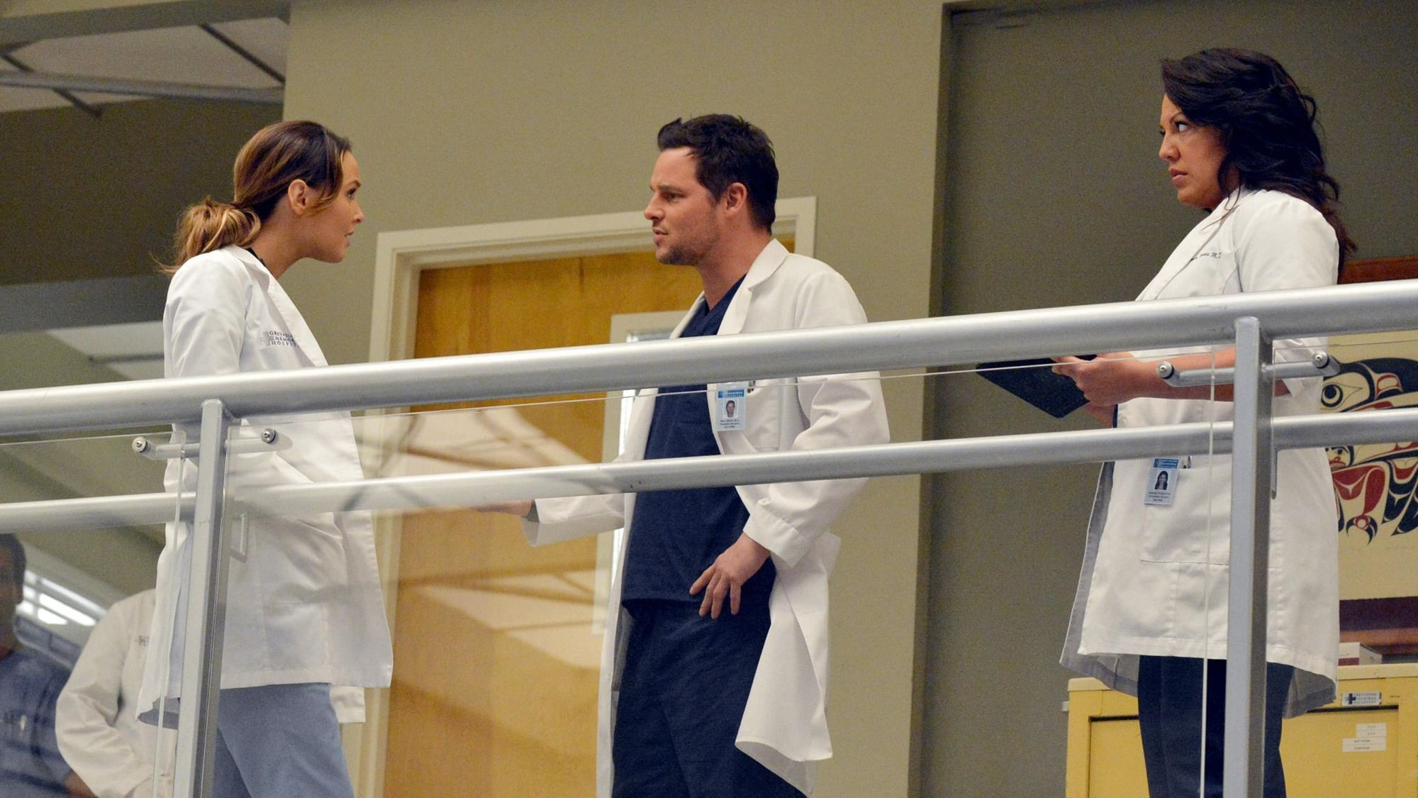 Grey's Anatomy - Season 10 Episode 14 : You've Got to Hide Your Love Away