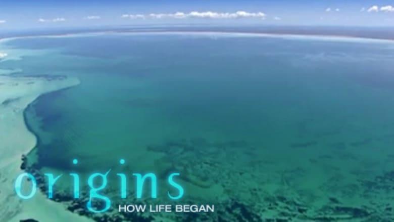 NOVA - Season 32 Episode 2 : Origins: How Life Began